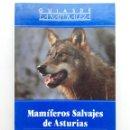 Libros de segunda mano: MAMIFEROS SALVAJES DE ASTURIAS - ERNESTO JUNCO - GUIAS DE LA NATURALEZA. Lote 164976070