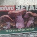 Libros de segunda mano: SETAS DE LA PENÍNSULA IBÉRICA - GUÍAS DE BOLSILLO - NATURA. Lote 165200942
