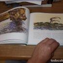 Libros de segunda mano: LES TERRES DE BALIAR(APUNTS DE NATURA I DE PAISATGE).MALLORCA,MENORCA ,EIVISSA,FORMENTERA.1998.FOTOS. Lote 165310902