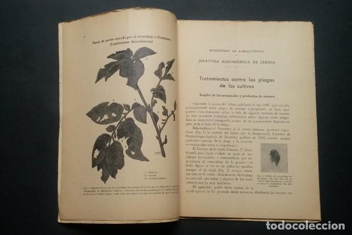 Libros de segunda mano: A174.- TRATAMIENTOS CONTRA LAS PLAGAS DE LOS CULTIVOS.- ANTONIO BERTRAN - Foto 8 - 165345830