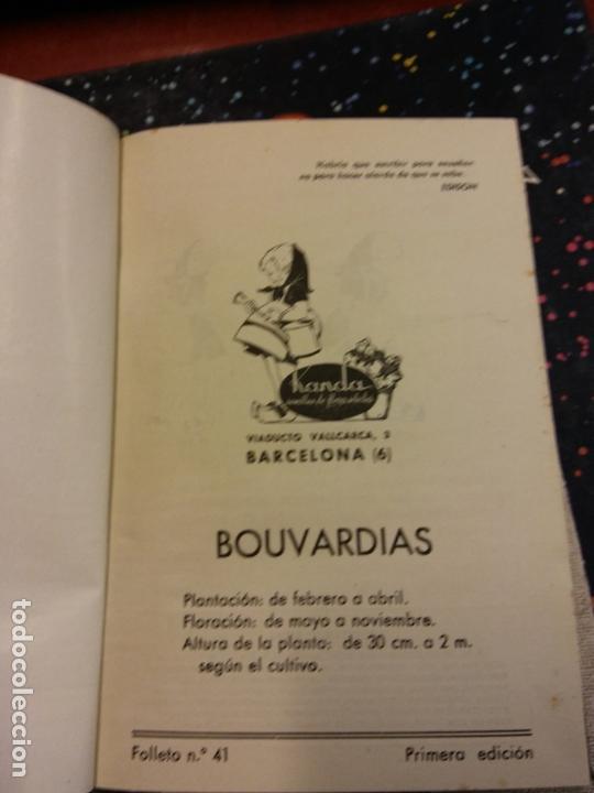 STQ.BOUVARDIAS.FOLLETO N 41.EDT, BARCELONA.BRUMART TU LIBRERIA. (Libros de Segunda Mano - Ciencias, Manuales y Oficios - Biología y Botánica)