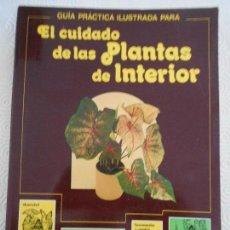 Libros de segunda mano: EL CUIDADO DE LAS PLANTAS DE INTERIOR. GUIA PRACTICA ILUSTRADA. BLUME JARDINERIA. POR DAVID LONGMAN.. Lote 166488802