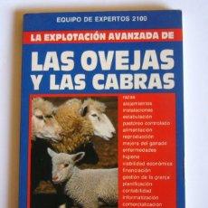 Libri di seconda mano: LA EXPLOTACION AVANZADA DE LAS OVEJAS Y LAS CABRAS - EQUIPO DE EXPERTOS 2100. Lote 166654970