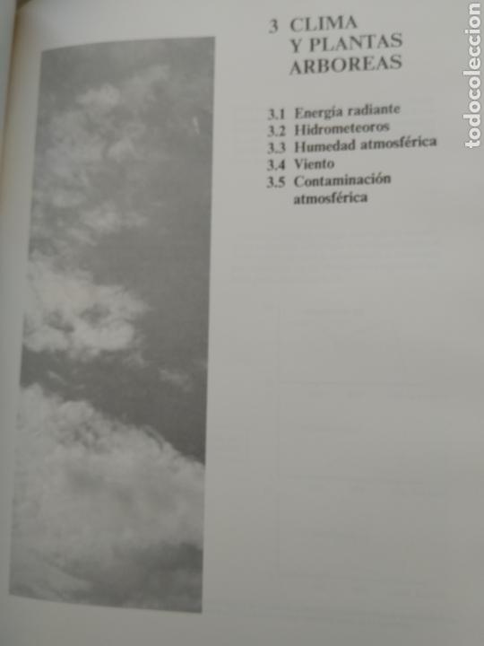Libros de segunda mano: ARBORICULTURA GENERAL/ENRICO BALDINI - Foto 4 - 167970906
