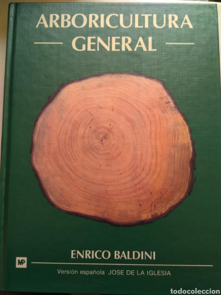ARBORICULTURA GENERAL/ENRICO BALDINI (Libros de Segunda Mano - Ciencias, Manuales y Oficios - Biología y Botánica)