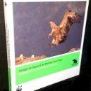 Libros de segunda mano: B1142 - REFUGIO DE RAPACES DE MONTEJO DE LA VEGA. AVES. CAJA MADRID 2008.. Lote 167993684