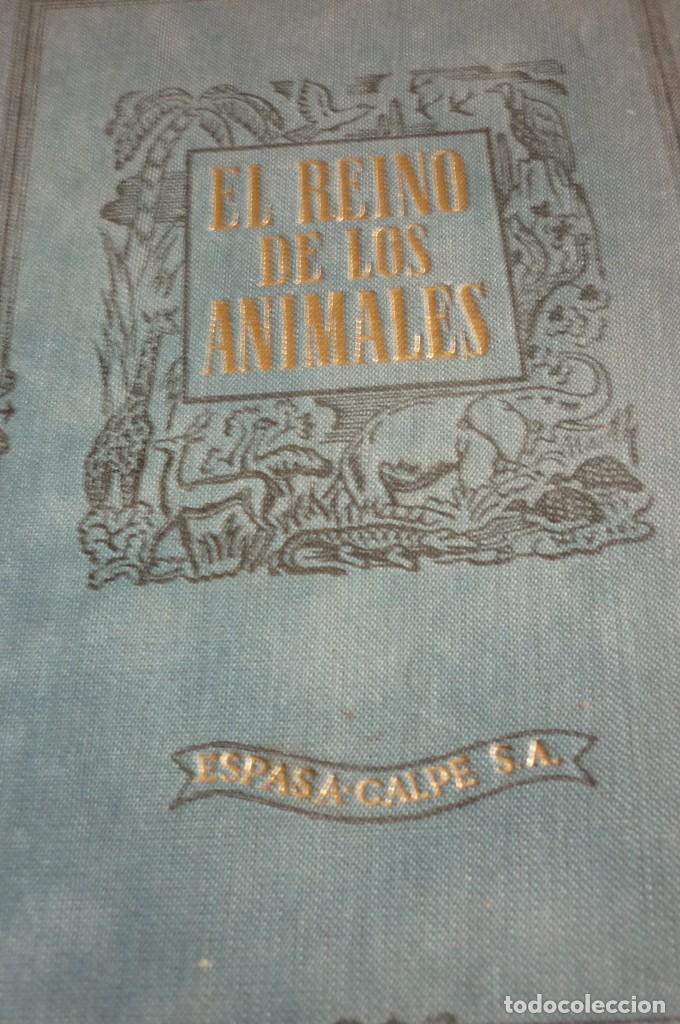 1953 EL REINO DE LOS ANIMALES. ESPASA CALPE. TRES TOMOS. COMPLETA (Libros de Segunda Mano - Ciencias, Manuales y Oficios - Biología y Botánica)