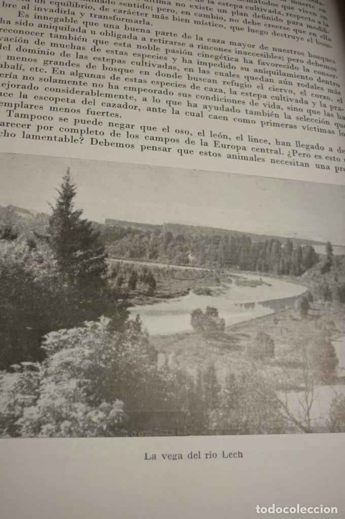 Libros de segunda mano: 1953 EL REINO DE LOS ANIMALES. ESPASA CALPE. TRES TOMOS. COMPLETA - Foto 9 - 168373880