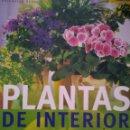 Libros de segunda mano: PLANTAS DE INTERIOR. JARDINERÍA PARA PRINCIPIANTES. ANJA FLEHMIG. CIRCULO DE LECTORES. AÑO 2004. CAR. Lote 168612514