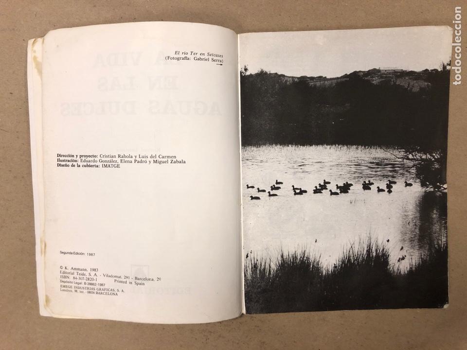 Libros de segunda mano: LA VIDA EN LAS AGUAS DULCES. KONRAD AMMANN. EDITORIAL TEIDE 1987. - Foto 3 - 168744193