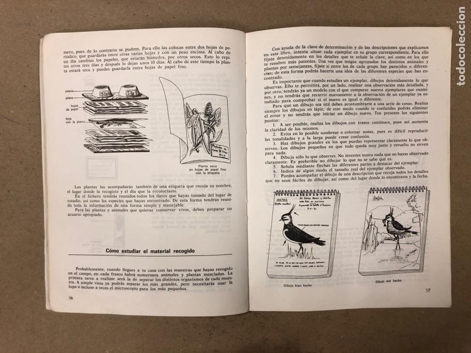 Libros de segunda mano: LA VIDA EN LAS AGUAS DULCES. KONRAD AMMANN. EDITORIAL TEIDE 1987. - Foto 5 - 168744193