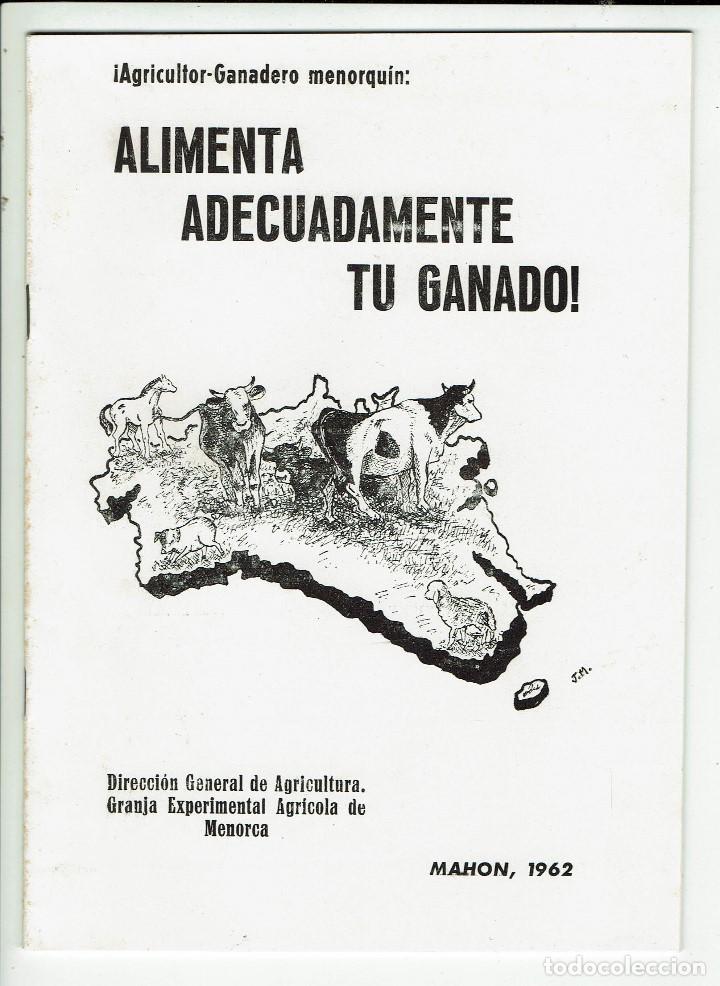 ¡AGRICULTOR-GANADERO MENORQUÍN: ALIMENTA ADECUADAMENTE TU GANADO! AÑO 1962. (MENORCA.3.4) (Libros de Segunda Mano - Ciencias, Manuales y Oficios - Biología y Botánica)