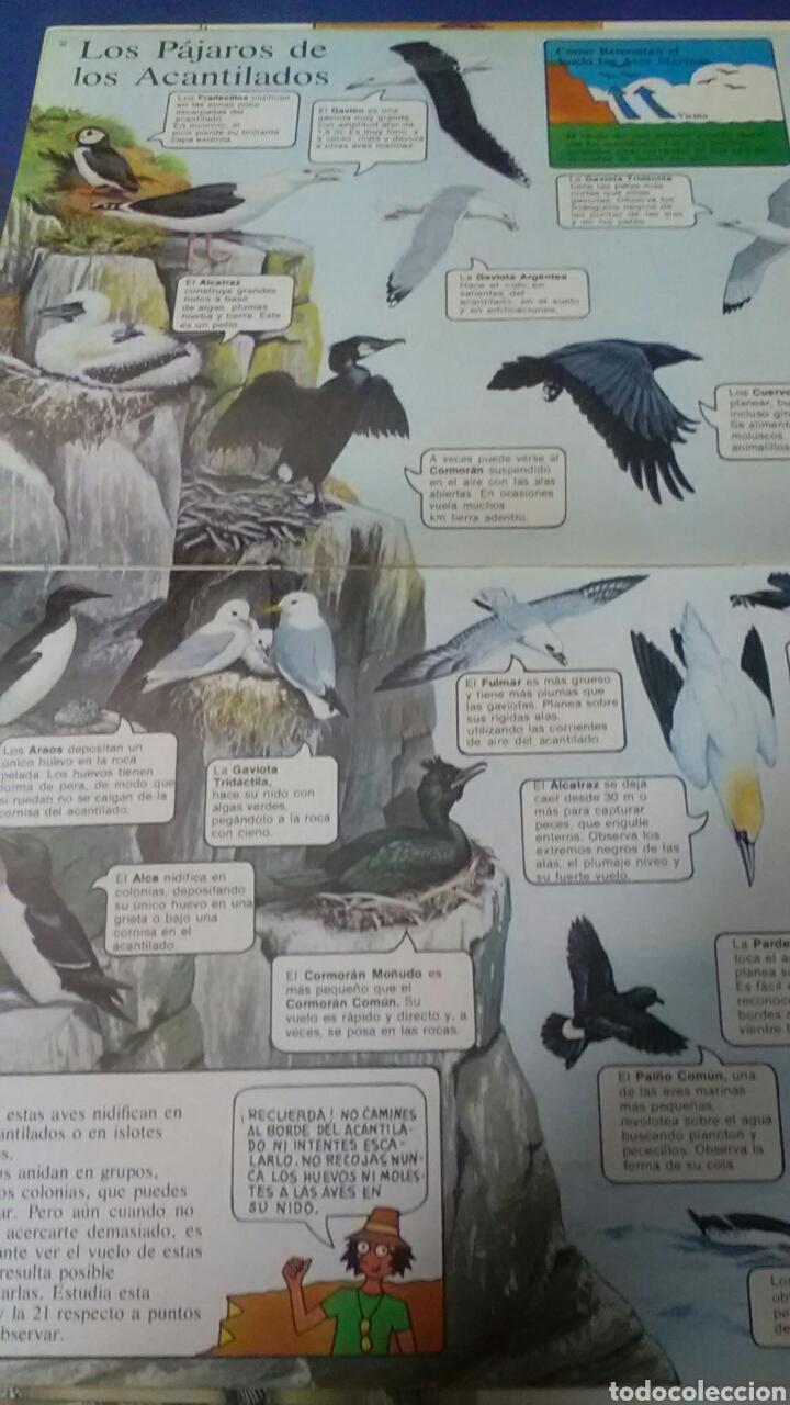Libros de segunda mano: La senda de la naturaleza .COSTAS Y PLAYAS .Ed.Plesa - SM - Foto 2 - 169873454