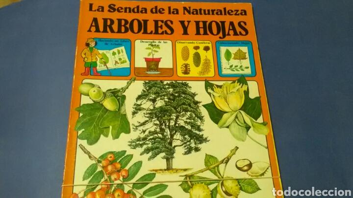 LA SENDA D LA NATURALEZA .ÁRBOLES Y HOJAS .ED. PLESA - SM (Libros de Segunda Mano - Ciencias, Manuales y Oficios - Biología y Botánica)