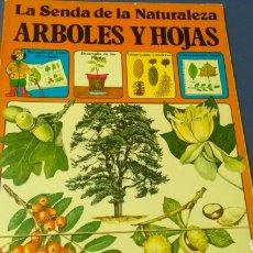Libros de segunda mano: LA SENDA D LA NATURALEZA .ÁRBOLES Y HOJAS .ED. PLESA - SM. Lote 169874193
