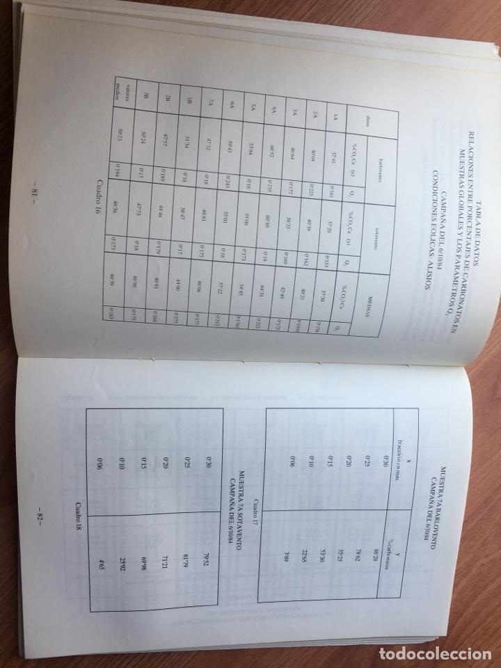 Libros de segunda mano: LAS DUNAS DE MASPALOMAS: GEOLOGIA E IMPACTO DEL ENTORNO. universidad politécnica las Palmas - Foto 5 - 169951152