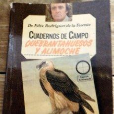 Libros de segunda mano: FELIX RODRIGUEZ DE LA FUENTE. CUADERNOS DE CAMPO NUM 16. QUEBRANTAHUESOS Y ALIMOCHE. Lote 170066488