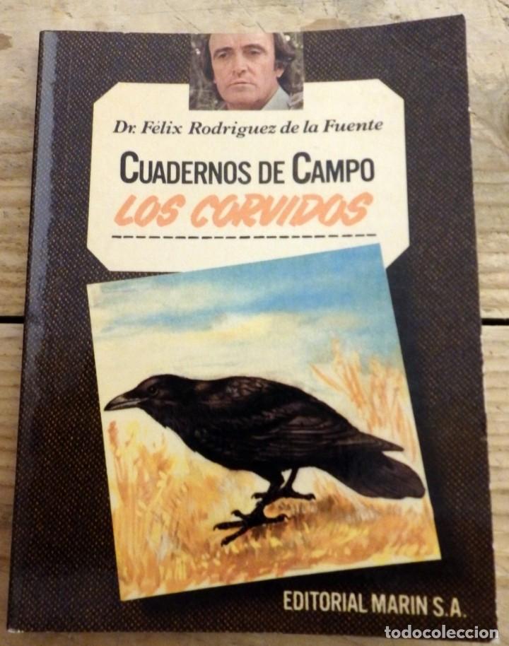 LOS CÓRVIDOS - CUADERNOS DE CAMPO - Nº 17 - FÉLIX RODRÍGUEZ DE LA FUENTE (Libros de Segunda Mano - Ciencias, Manuales y Oficios - Biología y Botánica)