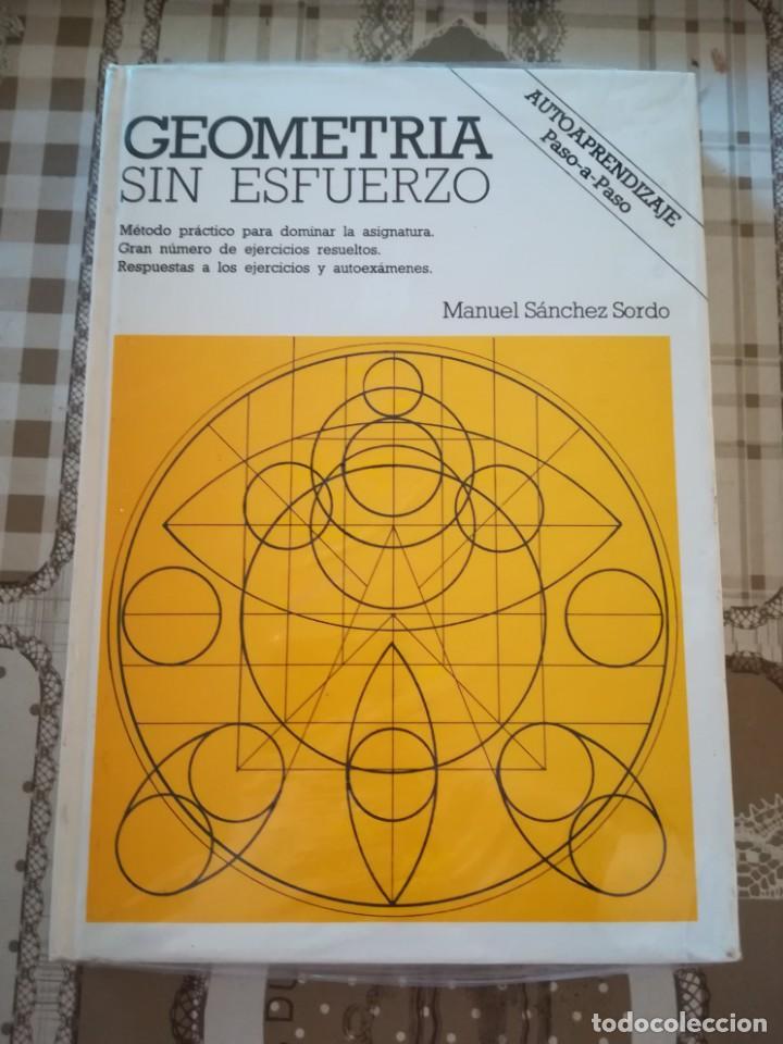 GEOMETRÍA SIN ESFUERZO - MANUEL SÁNCHEZ SORDO - PRECINTADO DE EDITORIAL (Libros de Segunda Mano - Ciencias, Manuales y Oficios - Física, Química y Matemáticas)