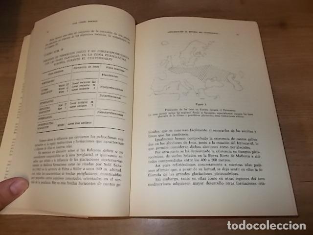 Libros de segunda mano: LOS TIEMPOS CUATERNARIOS EN BALEARES (MALLORCA,MENORCA ,IBIZA). JUAN CUERDA. 1ª EDICIÓN 1975. - Foto 3 - 170319966