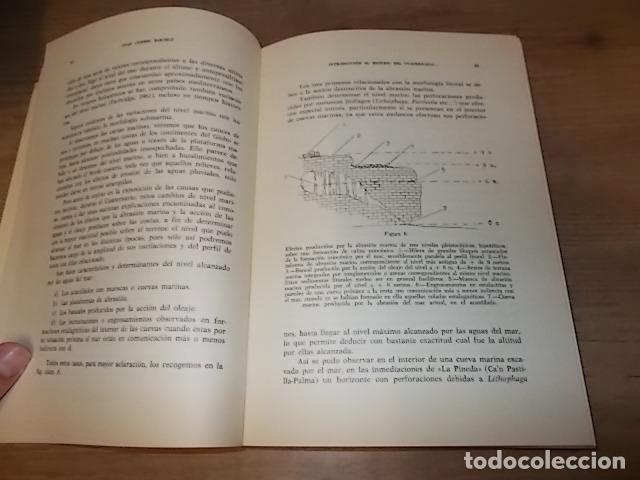 Libros de segunda mano: LOS TIEMPOS CUATERNARIOS EN BALEARES (MALLORCA,MENORCA ,IBIZA). JUAN CUERDA. 1ª EDICIÓN 1975. - Foto 6 - 170319966
