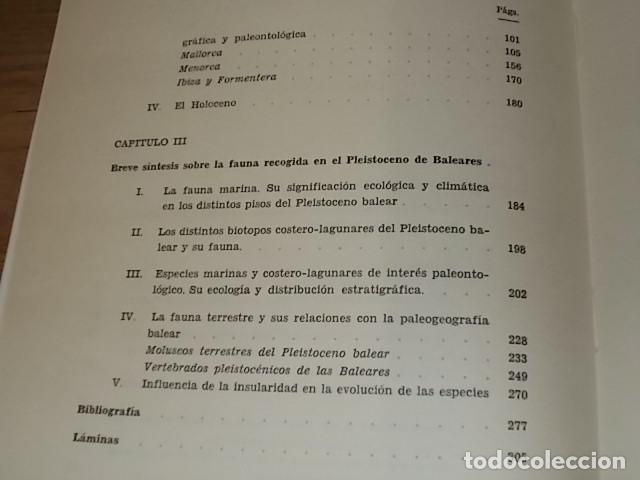 Libros de segunda mano: LOS TIEMPOS CUATERNARIOS EN BALEARES (MALLORCA,MENORCA ,IBIZA). JUAN CUERDA. 1ª EDICIÓN 1975. - Foto 21 - 170319966