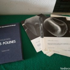 Libros de segunda mano: COLECION LOS POLENES CARPETAS CON 40 LAMINAS. Lote 170541757