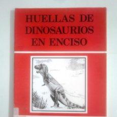 Libros de segunda mano: HUELLAS DE DINOSAURIOS EN ENCISO. LA RIOJA. RAFAEL BRANCAS. JORGE BLASCHKE. TDK387. Lote 170551572