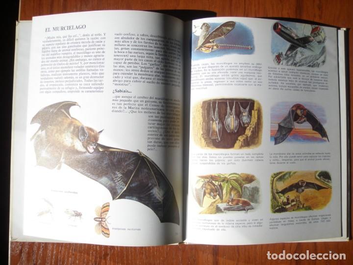 Libros de segunda mano: LIBRO VIDA INTIMA DE LOS ANIMALES DEL CAMPO Y DE LA GRANJA - Foto 3 - 170971320