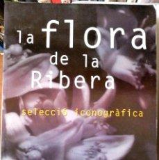 Libros de segunda mano: LÍDIA RIBERA - LA FLORA DE LA RIBERA (SELECCIÓ ICONOGRÀFICA) (CATALÁN). Lote 170917628