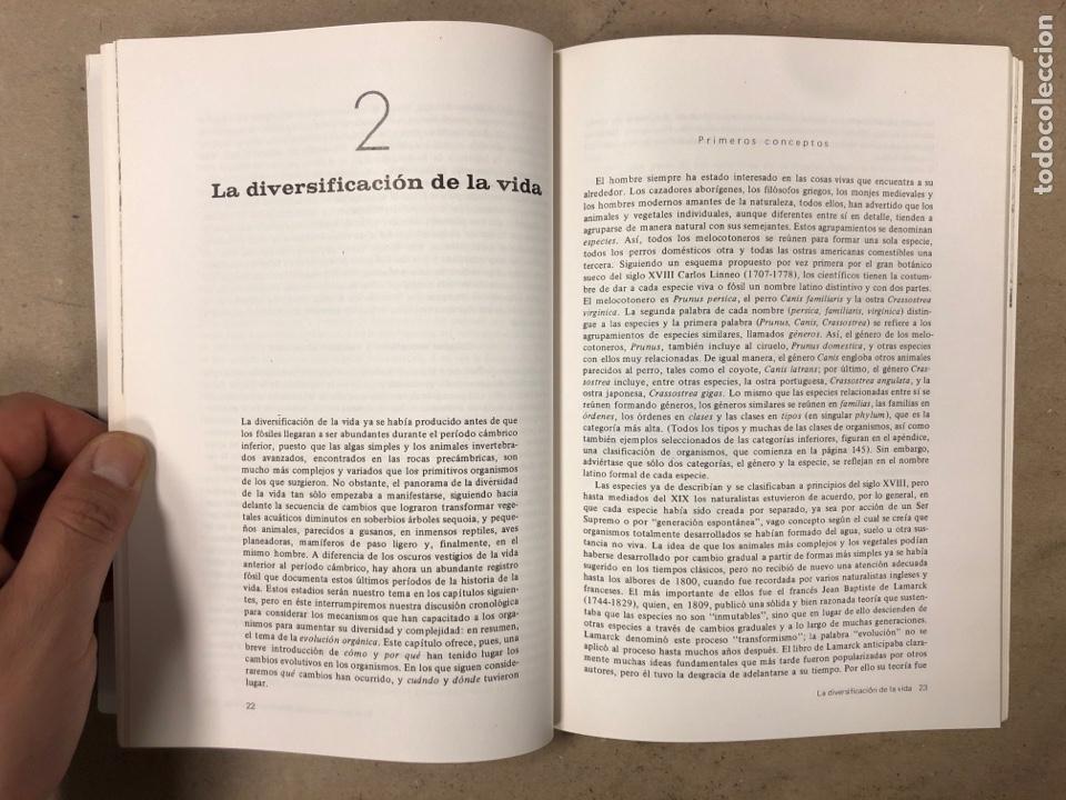 Libros de segunda mano: LOTE 5 LIBROS COLECCIÓN FUNDAMENTOS DE LAS CIENCIAS DE LA TIERRA DE EDICIONES OMEGA. - Foto 10 - 171599452