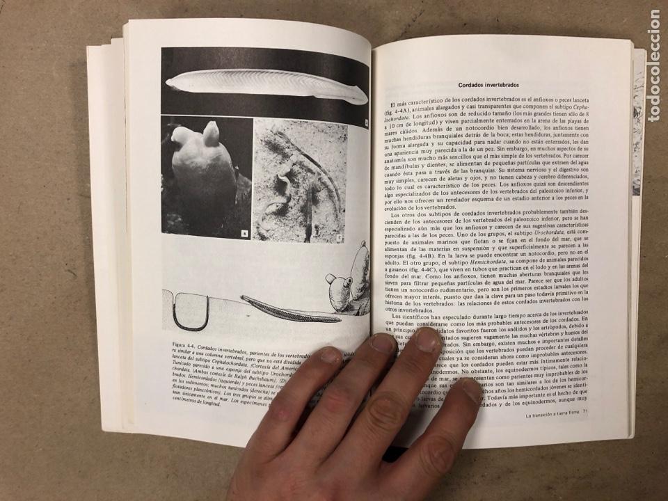 Libros de segunda mano: LOTE 5 LIBROS COLECCIÓN FUNDAMENTOS DE LAS CIENCIAS DE LA TIERRA DE EDICIONES OMEGA. - Foto 11 - 171599452