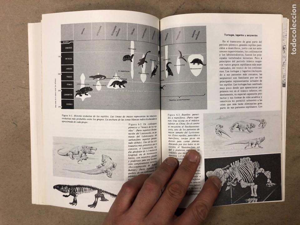 Libros de segunda mano: LOTE 5 LIBROS COLECCIÓN FUNDAMENTOS DE LAS CIENCIAS DE LA TIERRA DE EDICIONES OMEGA. - Foto 12 - 171599452
