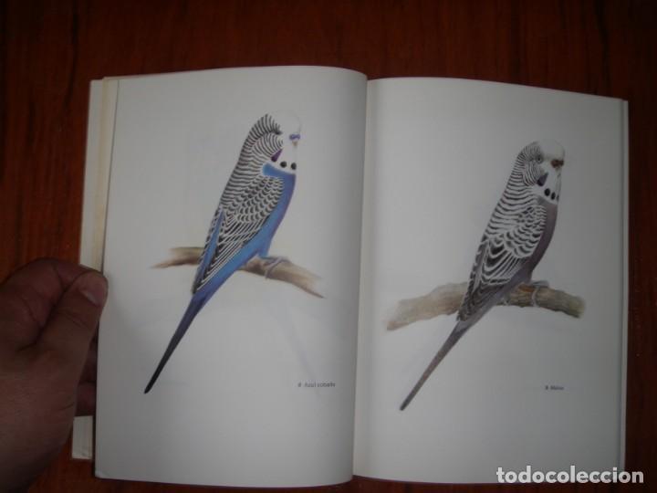 Libros de segunda mano: LIBRO PERIQUITOS DE COLOR A RUTGERS 1ª ED EN ESPAÑOL 1986 - Foto 6 - 171748407