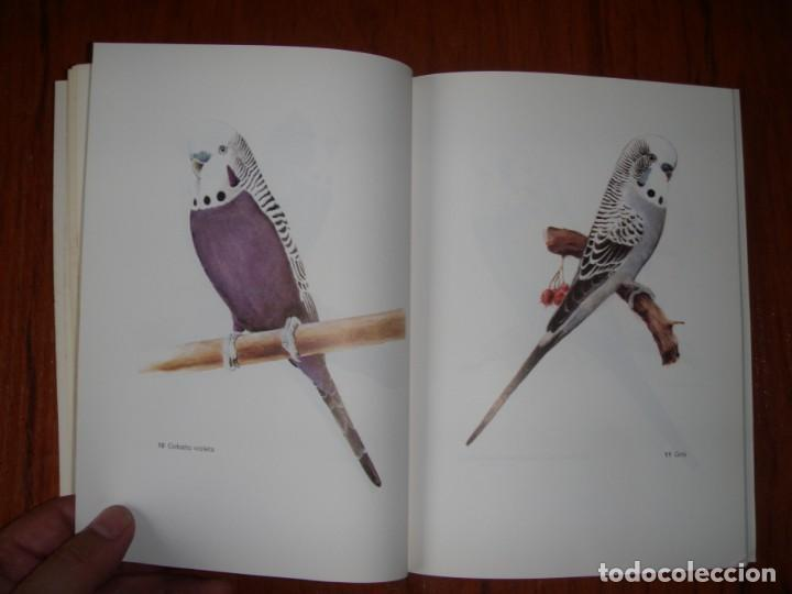 Libros de segunda mano: LIBRO PERIQUITOS DE COLOR A RUTGERS 1ª ED EN ESPAÑOL 1986 - Foto 7 - 171748407