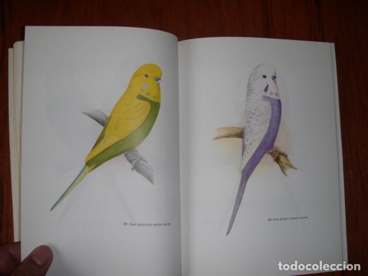 Libros de segunda mano: LIBRO PERIQUITOS DE COLOR A RUTGERS 1ª ED EN ESPAÑOL 1986 - Foto 9 - 171748407