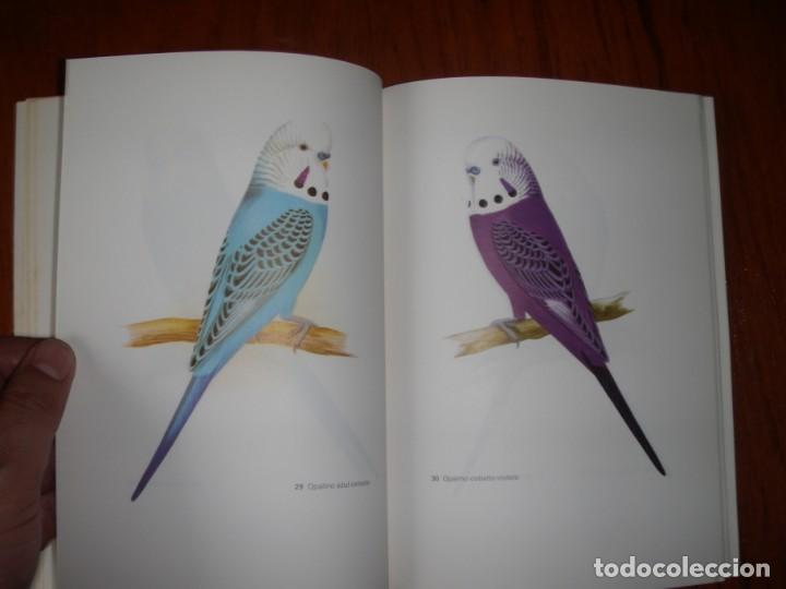 Libros de segunda mano: LIBRO PERIQUITOS DE COLOR A RUTGERS 1ª ED EN ESPAÑOL 1986 - Foto 12 - 171748407