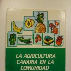 Libros de segunda mano: LA AGRICULTURA CANARIA EN LA COMUNIDAD EUROPEA. JULIAN ALBERTOS. ANTONIO MARTÍNEZ. JUAN A. SANS. . Lote 171944355
