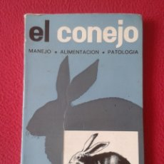 Libros de segunda mano: ANTIGUO LIBRO 1976 EL CONEJO MANEJO ALIMENTACIÓN PATOLOGÍA LIDIO RUIZ EDICIONES MUNDI-PRENSA 183 PÁG. Lote 172230557