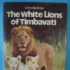 Libros de segunda mano: THE WHITE LIONS OF TIMBAVATI - CHRIS MCBRIDE - PADDINGTON PRESS, 1977 - (TAPA DURA, EN INGLES) . Lote 172237780