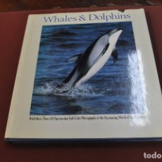 Libros de segunda mano: WHALES DOLPHIS - VIC COX - IDIOMA INGLÉS - FFB. Lote 172302688