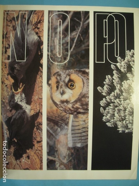 Libros de segunda mano: THE AUDUBON SOCIETY - ENCYCLOPEDIA OF NORTH AMERICAN BIRDS - JOHN K. TERRES - WING BOOKS, 1991 - Foto 4 - 172357773