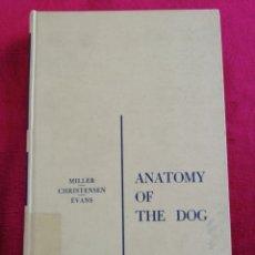 Libros de segunda mano: ANATOMY OF THE DOG. MILLER/CHRISTENSEN/EVANS. AÑO 1964. EN INGLÉS.. Lote 172999365