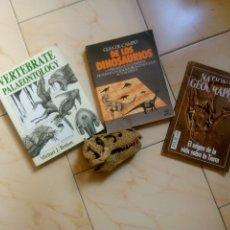 Libros de segunda mano: LOTE LIBROS PALEONTOLOGÍA BENTON, LAMBERT Y MAQUETA TYRANOSAURUS REX. Lote 170346372