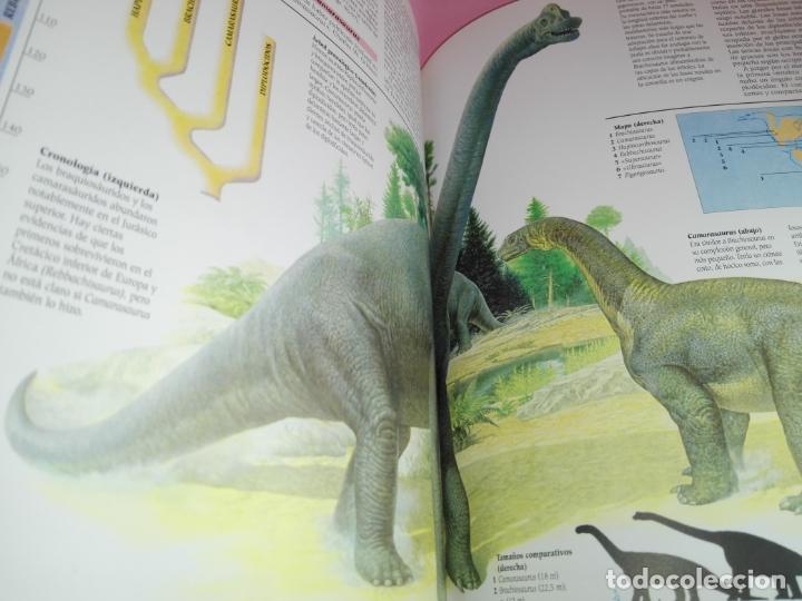 Libros de segunda mano: Libro-Atlas ilustrado de los Dinosaurios-Susaeta-Nuevo-Ver fotos - Foto 13 - 173092604