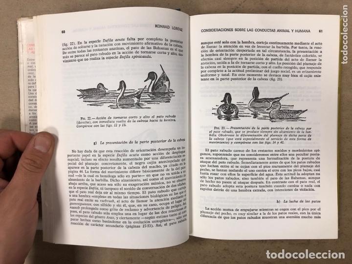 Libros de segunda mano: CONSIDERACIONES SOBRE LAS CONDUCTAS ANIMAL Y HUMANA. KONRAD LORENZ. PLAZA & JANÉS EDITORES 1976 - Foto 5 - 173198718