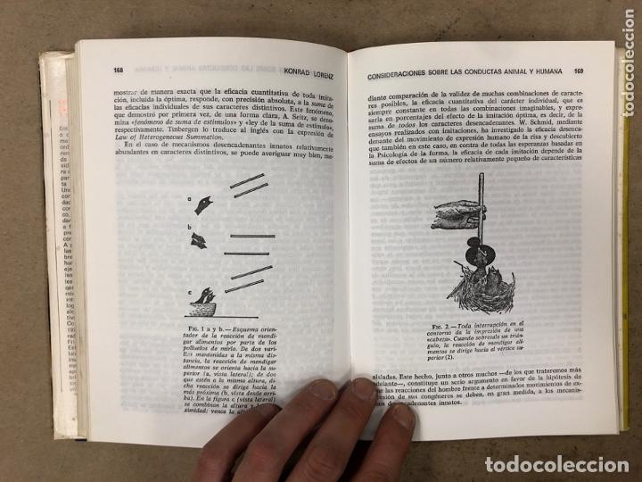 Libros de segunda mano: CONSIDERACIONES SOBRE LAS CONDUCTAS ANIMAL Y HUMANA. KONRAD LORENZ. PLAZA & JANÉS EDITORES 1976 - Foto 6 - 173198718