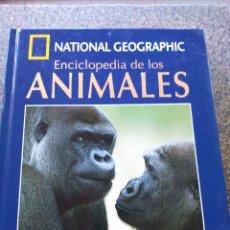 Libros de segunda mano: NATIONAL GEOGRAPHIC - ENCICLOPEDIA DE LOS ANIMALES - MAMIFEROS TOMO II -- LIBRO + DVD --. Lote 173669087