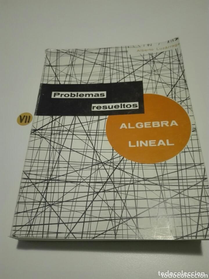 ÁLGEBRA LINEAL. PROBLEMAS RESUELTOS. ALBERTO LUZARRAGA. (Libros de Segunda Mano - Ciencias, Manuales y Oficios - Física, Química y Matemáticas)