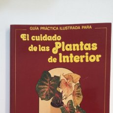 Libros de segunda mano: GUIA PRACTICA ILUSTRADA PARA EL CUIDADO DE LAS PLANTAS DE INTERIOR. - EDITORIAL BLUME . TDK403. Lote 174939435